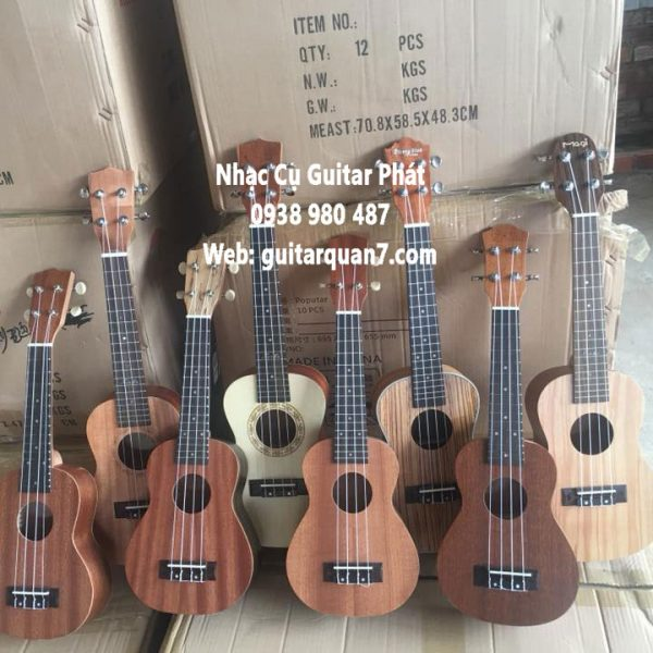 dan-ukulele-concert-gia-re-tai-quan-7-nha-be-tphcm (2)